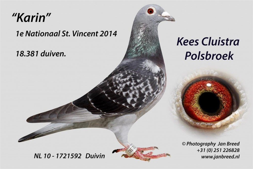 NL 10 - 1721592_St Vincent 2014 Kees Cluistra C Jan Breed