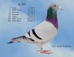 Of 569 Jan Owerkerk